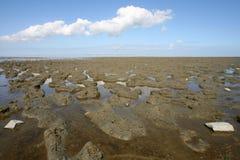 Mare di Wadden Fotografia Stock Libera da Diritti