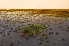 Mare di Wadden, Danimarca Fotografia Stock