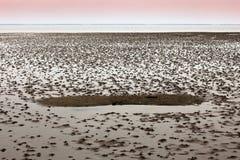 Mare di Wadden, Danimarca Fotografia Stock Libera da Diritti