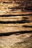 Mare dorato al tramonto Fotografie Stock Libere da Diritti