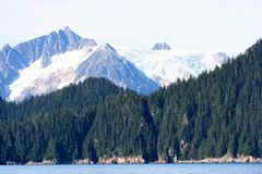 Mare e montagne dell'Alaska Fotografia Stock
