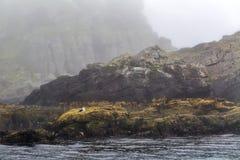 Mare e rocce maestosi in nebbia pesante in Norvegia del Nord Fotografie Stock Libere da Diritti