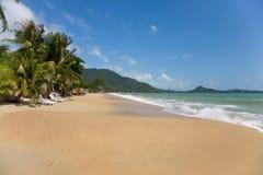 Mare e spiaggia con la palma di noce di cocco ed il lounger del sole Immagine Stock