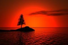 Mare ed abete rosso illustrazione vettoriale