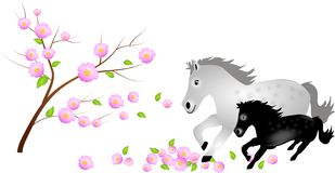 Mare with foal in falling blooms of tree Royalty Free Stock Image