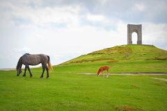 Mare,foal and monument,Bulgaria Royalty Free Stock Images