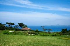 Mare in Okinawa immagine stock
