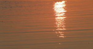 Mare su un fondo di tramonto e su una riflessione dei raggi nell'acqua archivi video