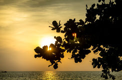 Mare in Tailandia Fotografia Stock Libera da Diritti