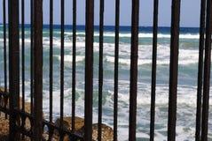 Mare tramite il recinto 1 Fotografie Stock Libere da Diritti