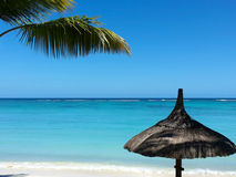 Mare tropicale di vacanza delle palme di paradiso della spiaggia Fotografia Stock Libera da Diritti