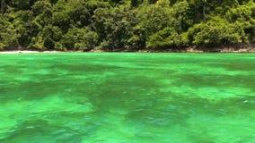 Mare verde smeraldo in Tailandia archivi video