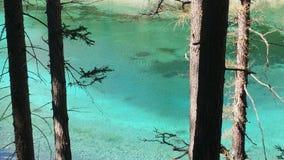Mare verde Stiria Austria immagine stock