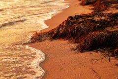 Mare Wave al tramonto immagini stock libere da diritti