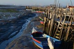 Marea baja en el puerto pesquero artesanal de Carrasqueira, estuario del río de Sado, Portugal del palaphite Fotografía de archivo libre de regalías