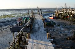 Marea baja en el puerto pesquero artesanal de Carrasqueira, estuario del río de Sado, Portugal del palaphite Foto de archivo libre de regalías