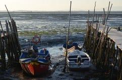 Marea baja en el puerto pesquero artesanal de Carrasqueira, estuario del río de Sado, Portugal del palaphite Imágenes de archivo libres de regalías