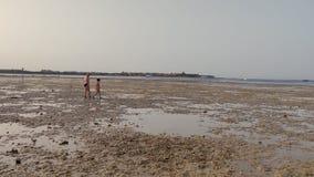 Marea baja en la playa, filón muerto, en la puesta del sol el adolescente del hombre y de la muchacha en trajes de baño camina en almacen de video