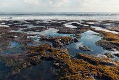 Marea del océano y paisaje de las rocas Imagenes de archivo