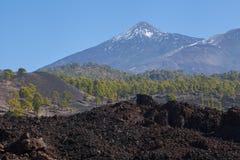 marea Parque nacional Teide El ir de excursión en el volcán Fotos de archivo libres de regalías
