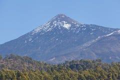 marea Parque nacional Teide El ir de excursión en el volcán Imagenes de archivo
