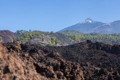 marea Parque nacional Teide El ir de excursión en el volcán Fotos de archivo
