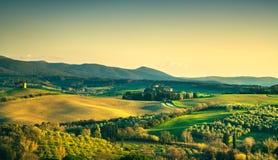 Maremma乡下和Magona森林比博纳,托斯卡纳,意大利 库存照片