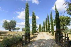 Maremma (托斯卡纳,意大利) 免版税库存照片