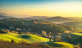 Maremma, rural sunrise landscape. Forest and green field. Tuscan Royalty Free Stock Photography