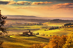 Maremma, rural sunset landscape. Countryside old farm and green Stock Photos