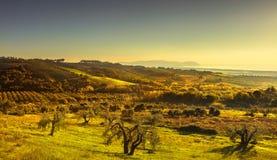 Maremma sunset panorama. Countryside, sea and Elba on horizon. S Stock Image
