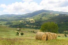 Maremma (Toscana, Italia) Fotografía de archivo