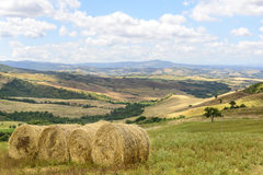 Maremma (Toscana, Italia) Imagen de archivo libre de regalías