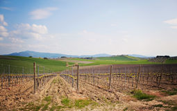 Maremma Tuscany Royalty Free Stock Photos