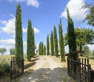 Maremma (Tuscany, Italy) Royalty Free Stock Photography