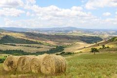 Maremma Tuscany, Włochy (,) obraz royalty free