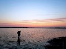 Marennes海滩一个晚上 库存图片