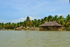 Mares au Kerala, Inde Photographie stock