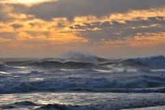 Mares salvajes Fotografía de archivo libre de regalías