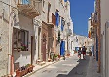 Marettimo Egadi海岛在离西西里岛的海岸的附近 免版税图库摄影