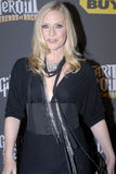 Marg Helgenberger on the red carpet. Marg Helgenberger from CSI appearing on the red carpet royalty free stock photos