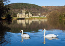 Margam Castle Stock Photography