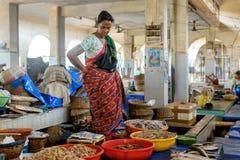 Margao, GOA, Índia - cerca do maio de 2014: A mulher indiana vende camarões no mercado de peixes, cerca do maio de 2014 em Margao Fotos de Stock