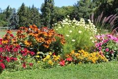 Margaret för blommaträdgård ö Budapest Royaltyfri Fotografi