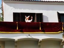 Margareta, Princess of Romania to the balcony in Elisabeth Palace stock photos