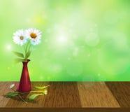 A margarida branca do gerbera floresce no vaso vermelho no tampo da mesa de madeira Foto de Stock