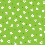 Margaridas bonitos tiradas à mão Teste padrão sem emenda floral dos desenhos animados Foto de Stock
