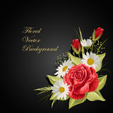 Margaridas brancas bonitas e rosas vermelhas Imagem de Stock Royalty Free