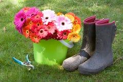 Margaridas, carregadores, & secateurs - trabalho de jarda Fotos de Stock Royalty Free