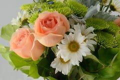 Margaridas e rosas Fotografia de Stock Royalty Free